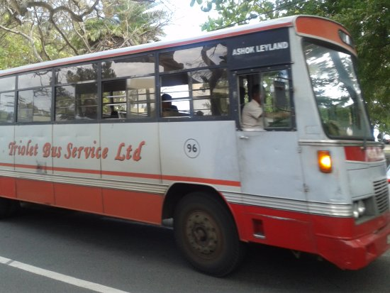 Pereybere Beach: Local bus, cheap and reliable