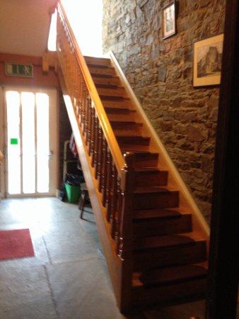 Tarbert, Irlanda: Steps up from lobby/ Ferry Hostel