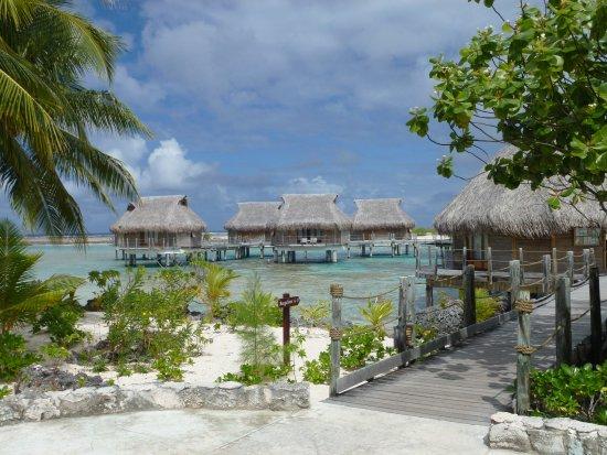 Tikehau Pearl Beach Resort: vue sur les pilotis