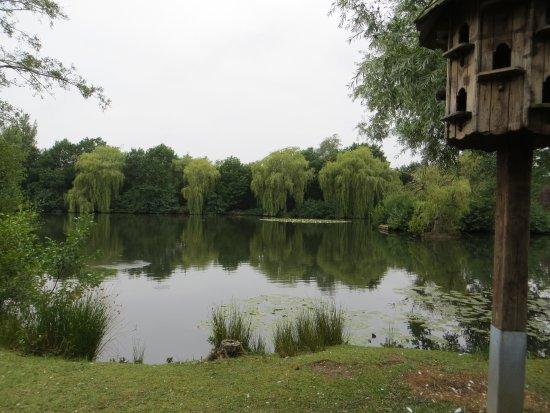 Sandhurst, UK: Tri-lakes dove-cote