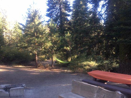 Springville, Californien: テントサイト
