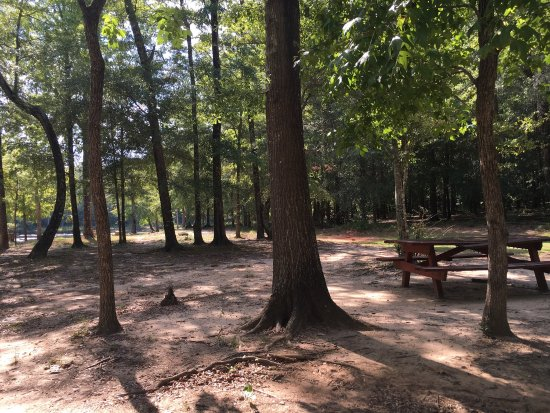 Thomaston, GA: photo1.jpg
