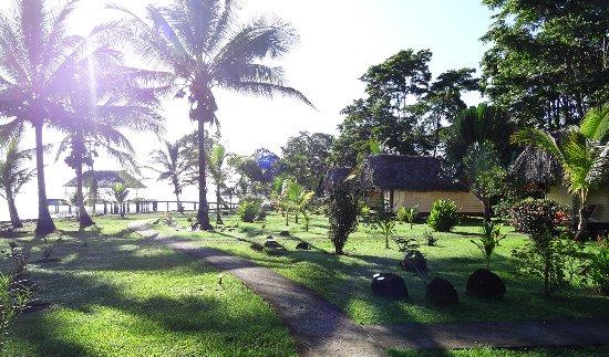 Isla San Cristobal, Panama : Tropical Garden at Dolphin Bay Cabanas