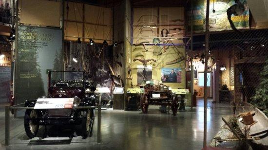Surrey Museum