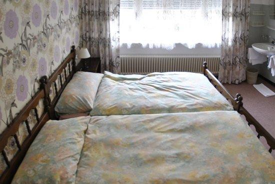 Bagno In Comune Hotel : Camera doppia con bagno in comune bild von hotel alpi locarno