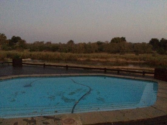 Sabie River Bush Lodge: Piscine avec la vue