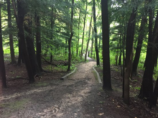 West Olive, MI: A nice hiking loop near Holland. Nothing too strenuous, but pretty. Equestrian and mountain biki