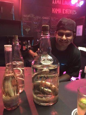 Kama Lounge & Bistro Bar: Sanke Rum!  Yes that is a Cobra!