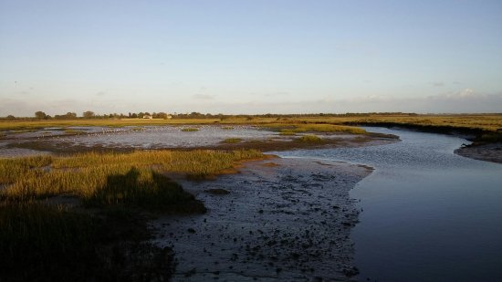 Pagham Harbour Local Nature Reserve