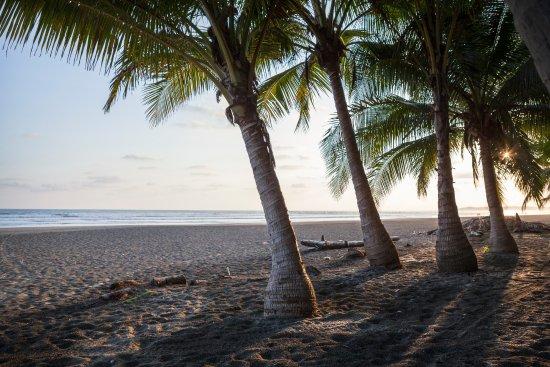 Esterillos Este, كوستاريكا: Standing at the archway to the Pelican looking out onto Playa Esterillos
