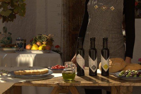 Dilar, إسبانيا: Oleoturismo en Granada