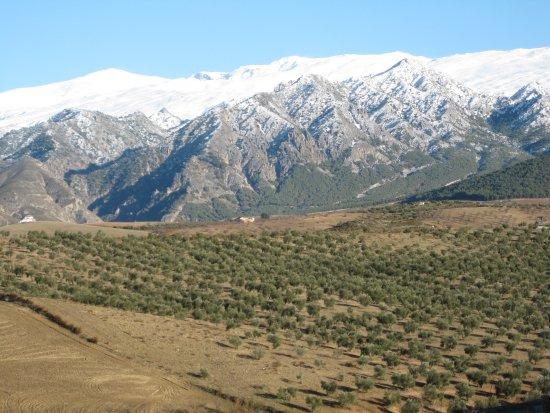 Dilar, Hiszpania: Vistas desde la Almazara Quaryat Dillar