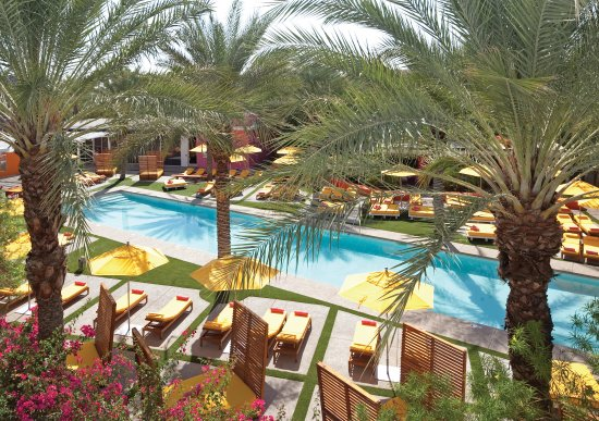 Saguaro Scottsdale: Beautiful Pool Views