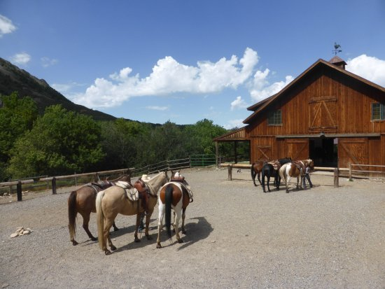 Crawford, CO: Horse Ranch