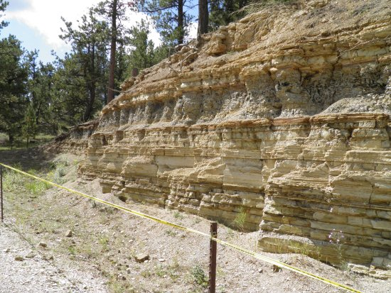 Florissant, Kolorado: Great Outcrop showing the shale layers that the fossils come from.
