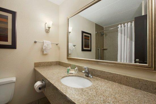 Holiday Inn & Suites Charleston West : Guest Bathroom