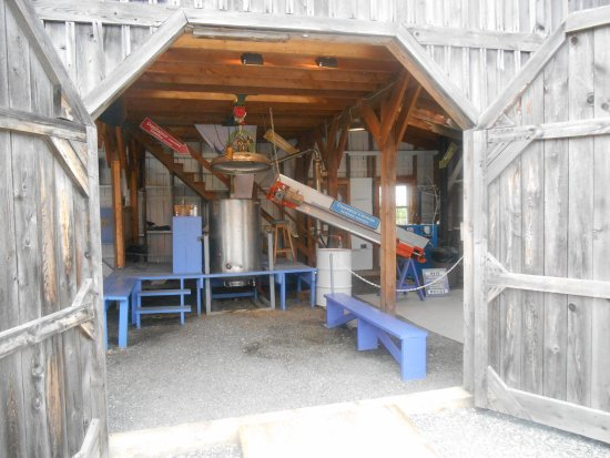 Stanstead, Kanada: lavender extraction process