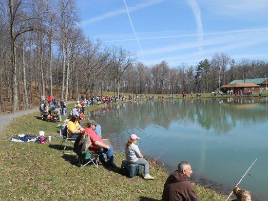 Chestnut Ridge Park and Campground照片