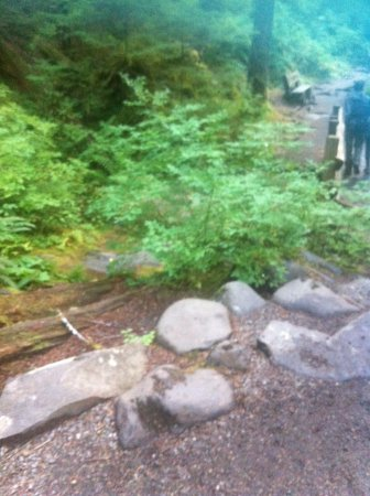 Sol Duc Hot Springs: River bed