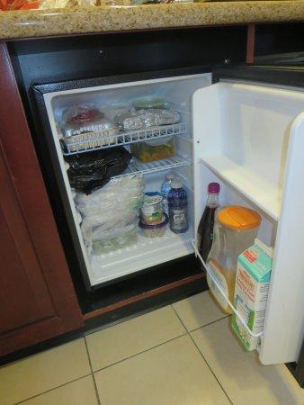 Hampton Inn & Suites Staten Island: This is the size of the fridge--no freezer