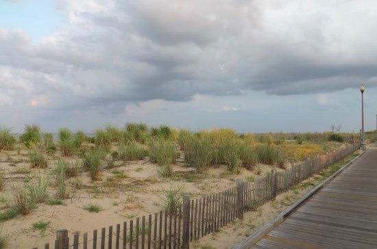 Dune Nature Park