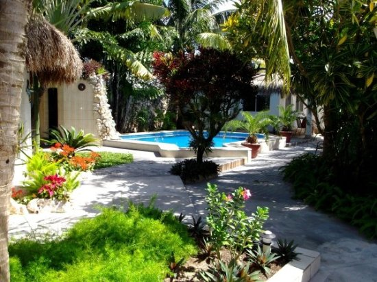 Baldwin's Guest House Cozumel: Beautiful Grounds