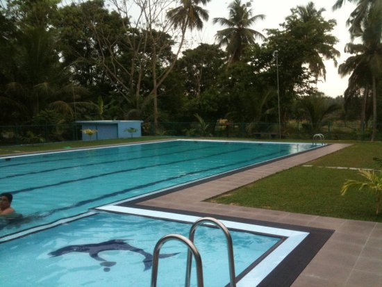 North Western Province, Sri Lanka: Rooms and pool