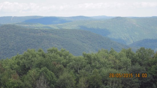 Lanesboro, Массачусетс: Incredible view from Mt. Greylock