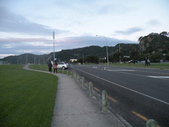 Whakatane, New Zealand: parte de la River Walk, más alejada de la costa.