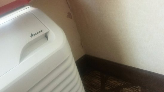 Doubletree by Hilton Hotel Murfreesboro: Paint flaking off