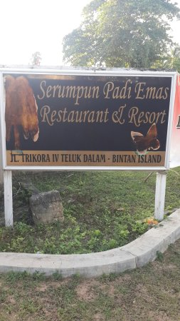 Serumpun Padi Emas Resort : 20160819_182427_large.jpg
