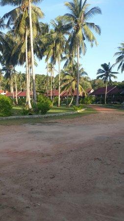 Serumpun Padi Emas Resort : 20160819_182234_large.jpg