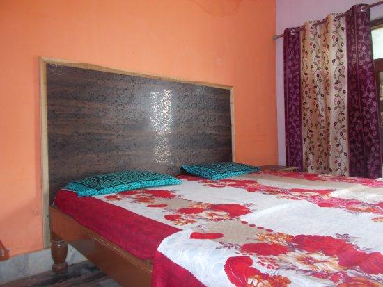 Hotel Plaza Khajuraho : Delux room