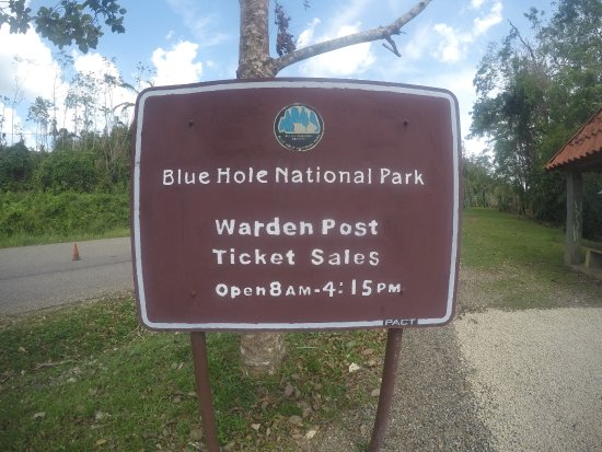 Ian Anderson's Caves Branch Jungle Lodge: Blue Hole National Park is only 20 minutes away walking! $4 entrance fee.