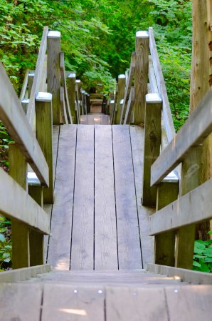 Washington Island, Висконсин: stairs leading down from lookout