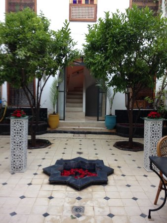 Riad Alma: Patio