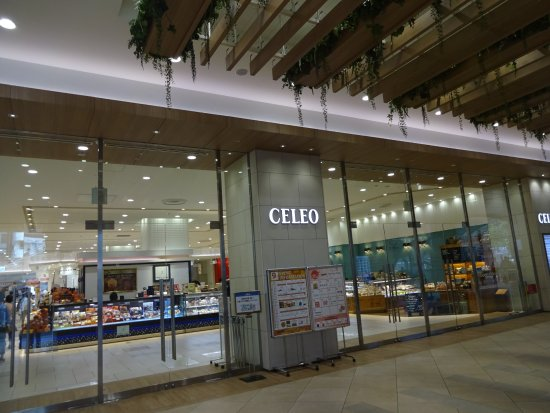 Celeo Hachioji