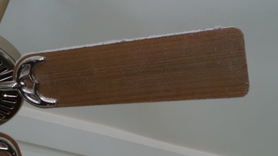 Point Reyes Station Inn: Huge pile of dust on ceiling fan over bed