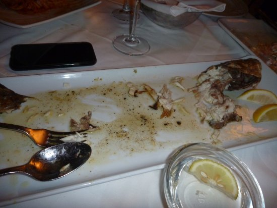 Gariful: Sea Bass GONE
