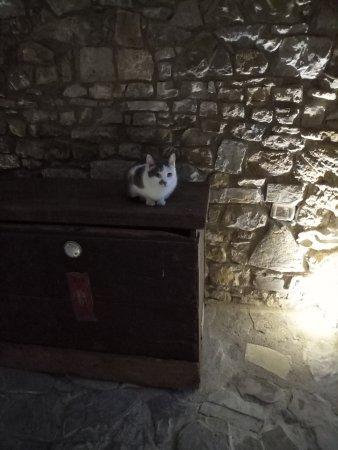 Ferriere, Italie : Lina, una delle Castellane