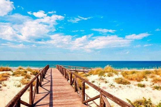Sol Sancti Petri: BeachAccess