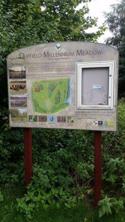 Duffield, UK: Information Board