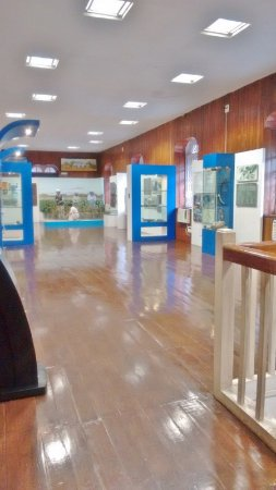 Indian Customs & Central Excise Museum