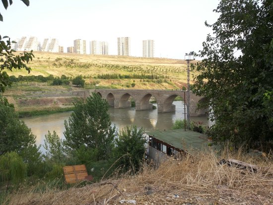 The Old Bridge on Tigris River: The bridge