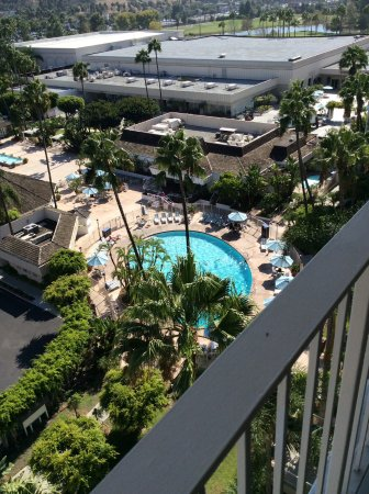 Town and Country Resort & Convention Center: Pool and convention center
