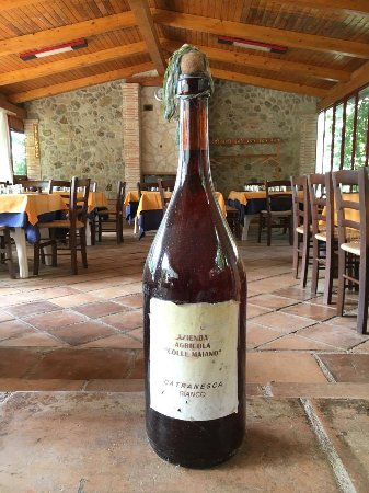 Agriturismo Colle Maiano