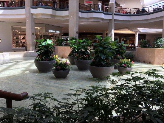 St. Louis Galleria