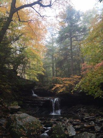 Benton, PA: Ricketts Glen State Park