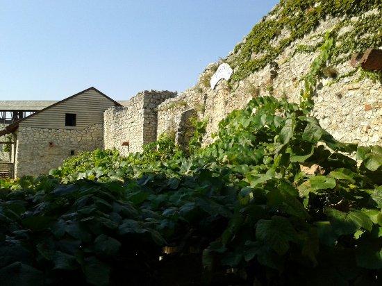 Sumeg, المجر: 20160909_110816_large.jpg