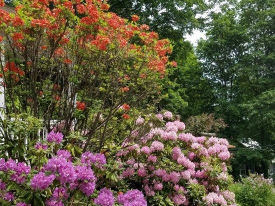 Leominster, ماساتشوستس: Doyle Community Park